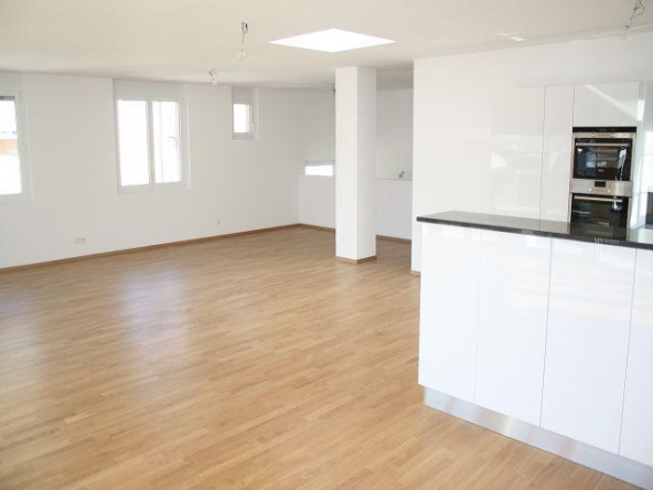 Immobilien Bellinzona - 4180/1100-3