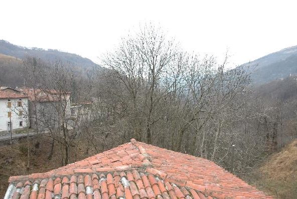 Immobilien Bogno - 4180/173-5
