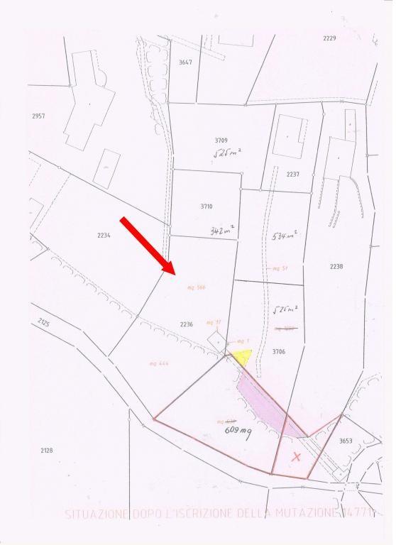 Immobilien Brissago - 4180/1313-8