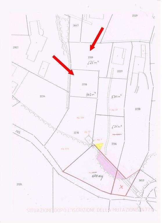 Immobilien Brissago - 4180/1314-8