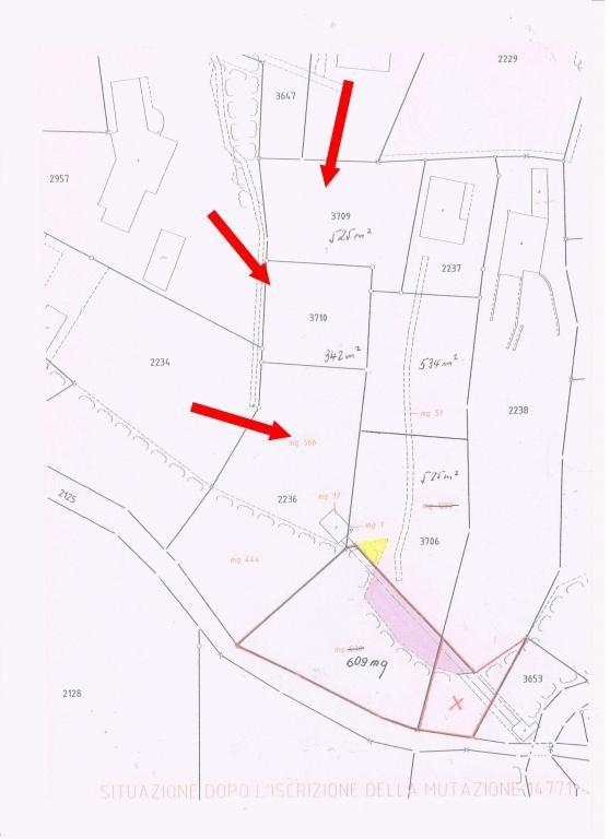 Immobilien Brissago - 4180/1316-8
