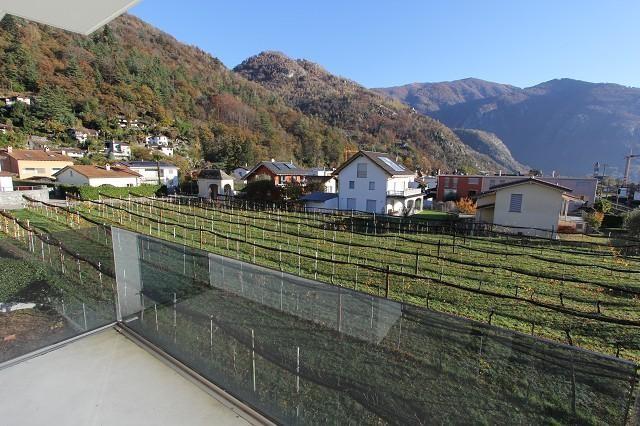 Immobilien Cavigliano - 4180/2870-4