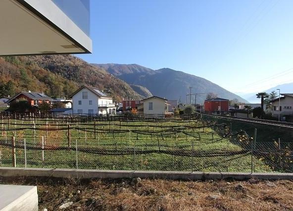 Immobilien Cavigliano - 4180/2870-8