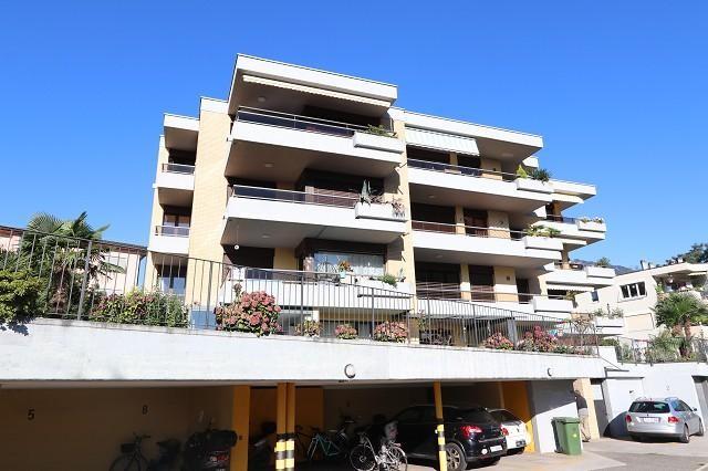 Immobilien Losone - 4180/3074-2