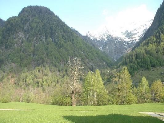 Immobilien Niva (Vallemaggia) - 4180/619-4
